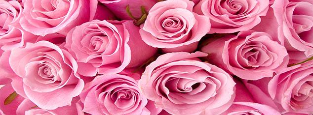 Un bouquet de messages laissés aux jeunes par le Prophète Muhammad (saw)